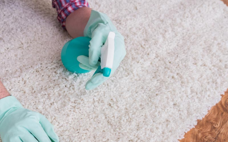 eco friendly Carpet Cleaners