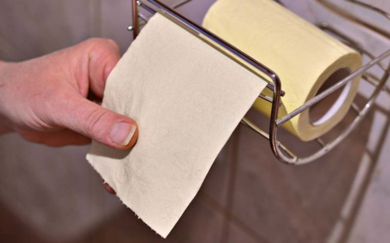 Is Bamboo Toilet Paper Better For The Environment