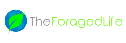 The Foraged Life